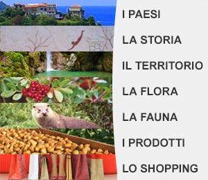 Cilento: paesi, storia, territorio, flora, fauna, prodotti tipici e shopping