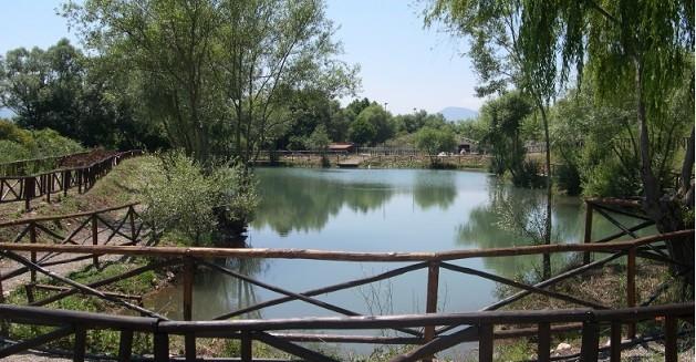 oasi-riofreddo