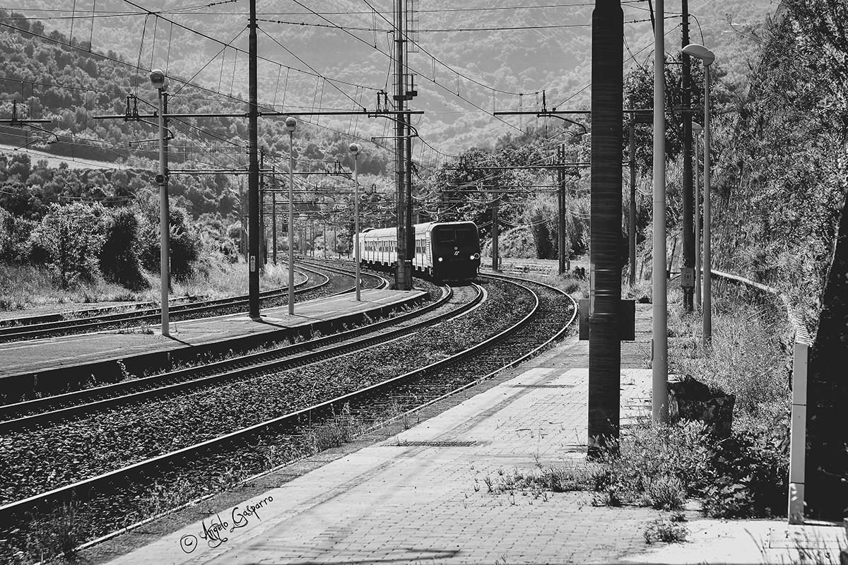 REPORTAGE: Rutino, il fischio del treno che richiama i cilentani