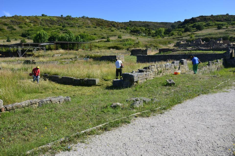 Volontari ripuliscono l'Area Archeologica di Velia