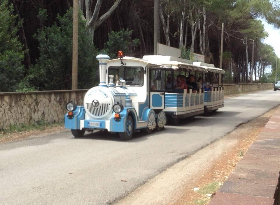 In treno turistico per le strade di Capaccio, domani l'innaugurazione