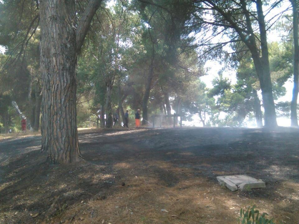 incendio_lacollinetta_2