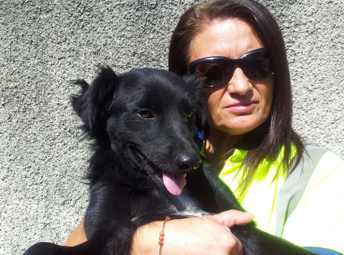 Fu abbandonato sulla A3, il cane cantoniere trova casa nel Cilento