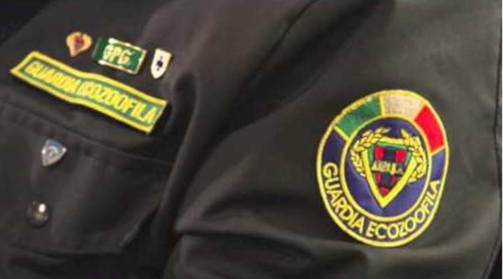 A San Giovanni a Piro arriva la polizia Eco-zoofila