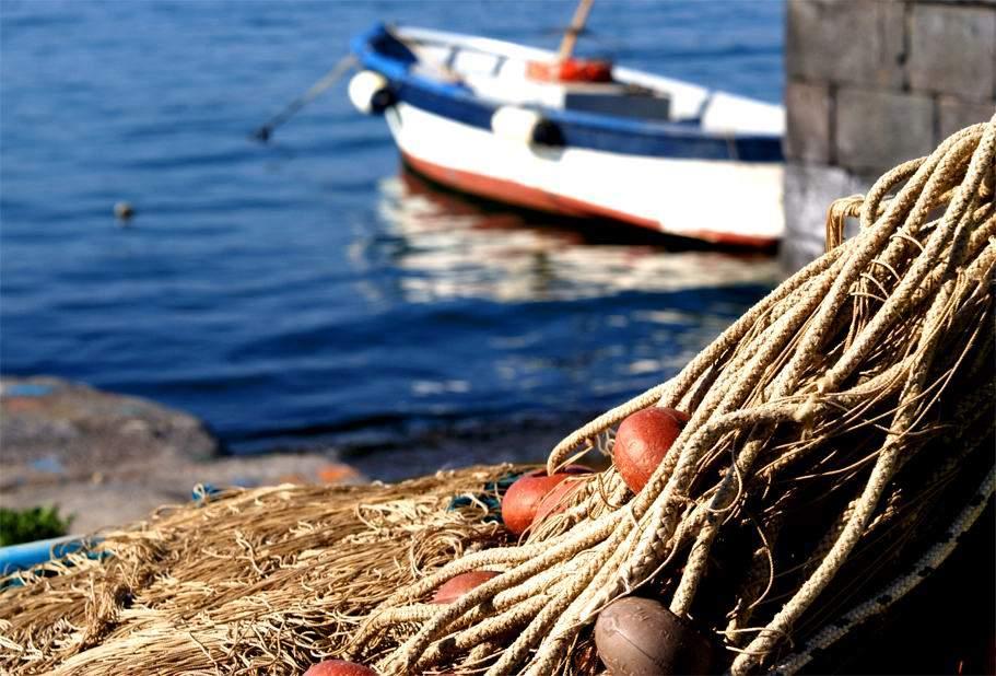 """Il """"Buon Pescato Cilentano"""" incontra la grande distribuzione"""