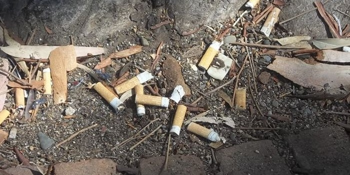 Appello ai sindaci del Parco: basta abbandonare cicche e gomme nell'ambiente