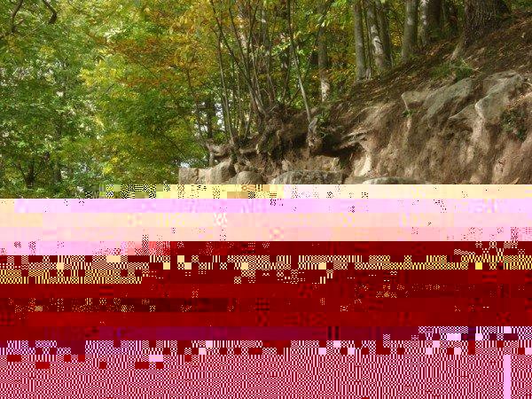 Photo of Moio: punta alla messa in sicurezza dell'area naturalistica della Civitella