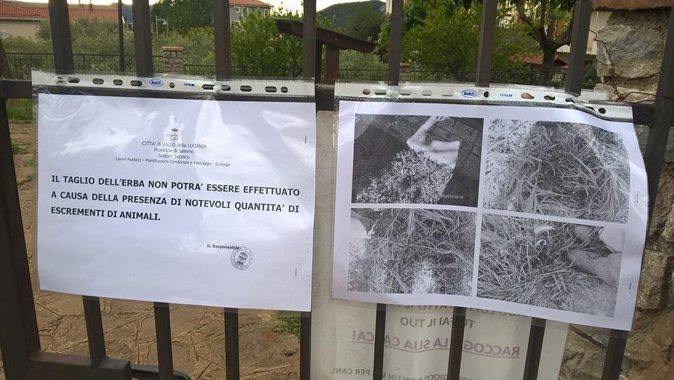 Troppi escrementi: il comune non ripulisce il Parco, ci pensano i cittadini | FOTO