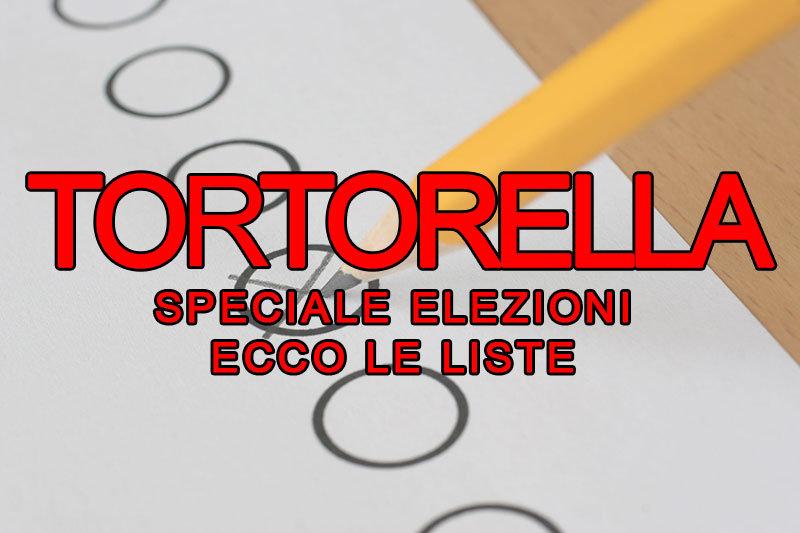 TORTORELLA_ELEZIONI