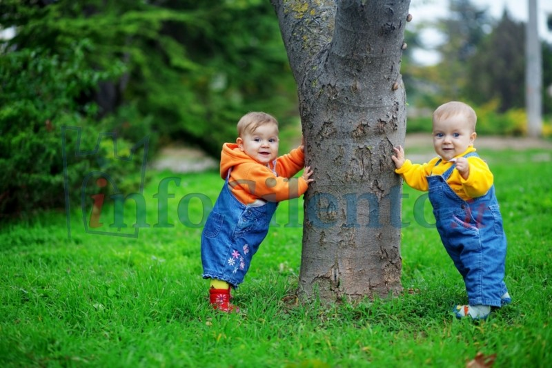 bambini_albero