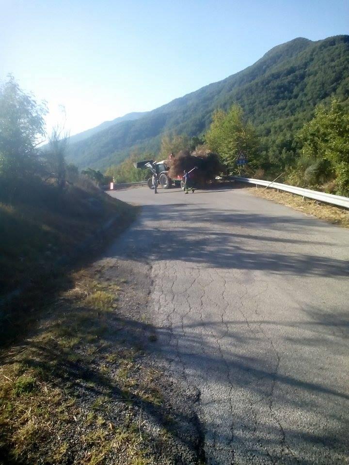Photo of Incontro Alfieri-Luciano: presto lo sblocco dei fondi per i forestali