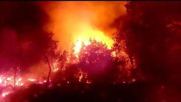 Ancora incendi nel Cilento, territorio devastato dalle fiamme