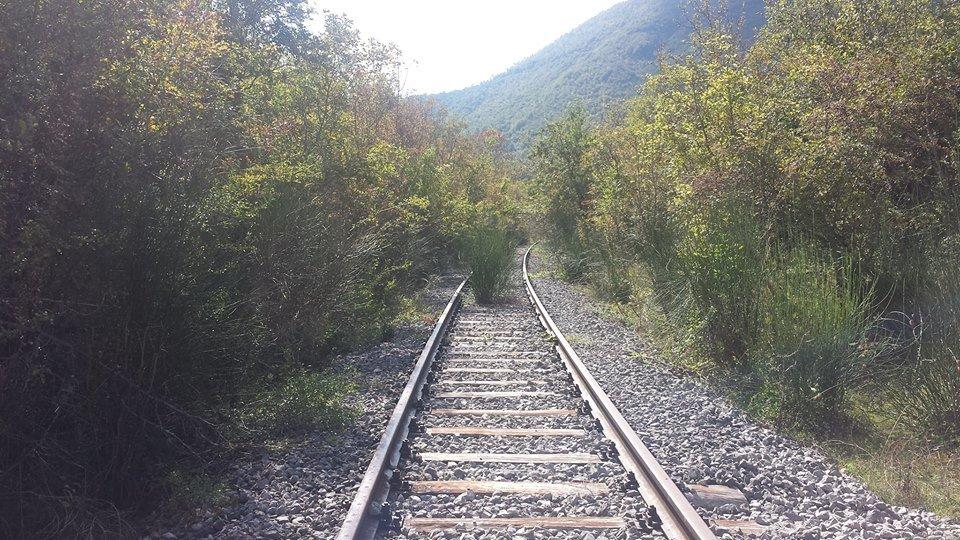 Freccia Rossa, Italobus e treni storici, la denuncia: Vallo di Diano dimenticato
