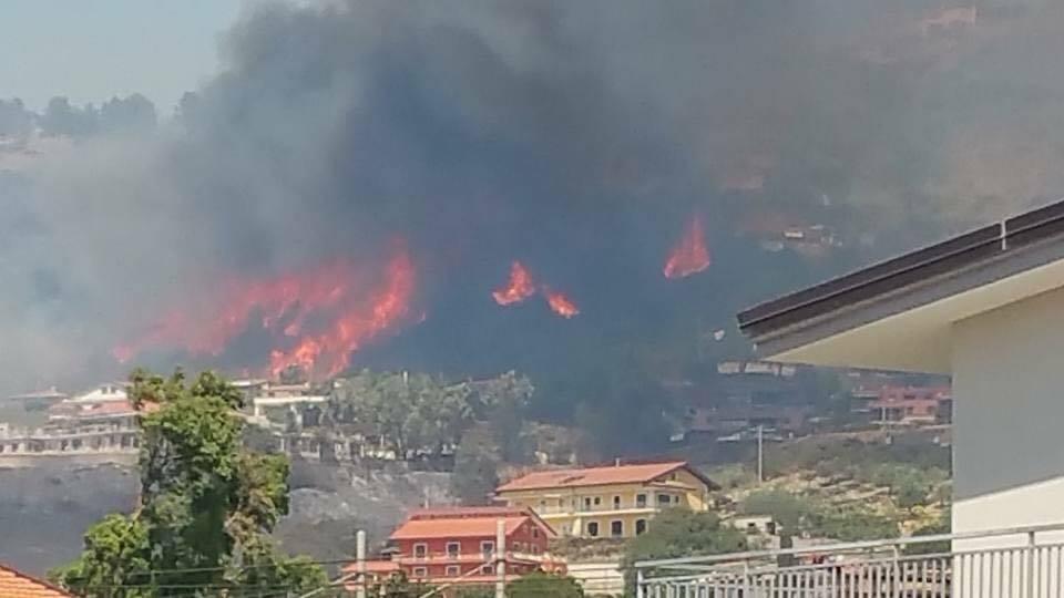 Incendi, Coldiretti: ci vorrano quindici anni per ricostruire i boschi