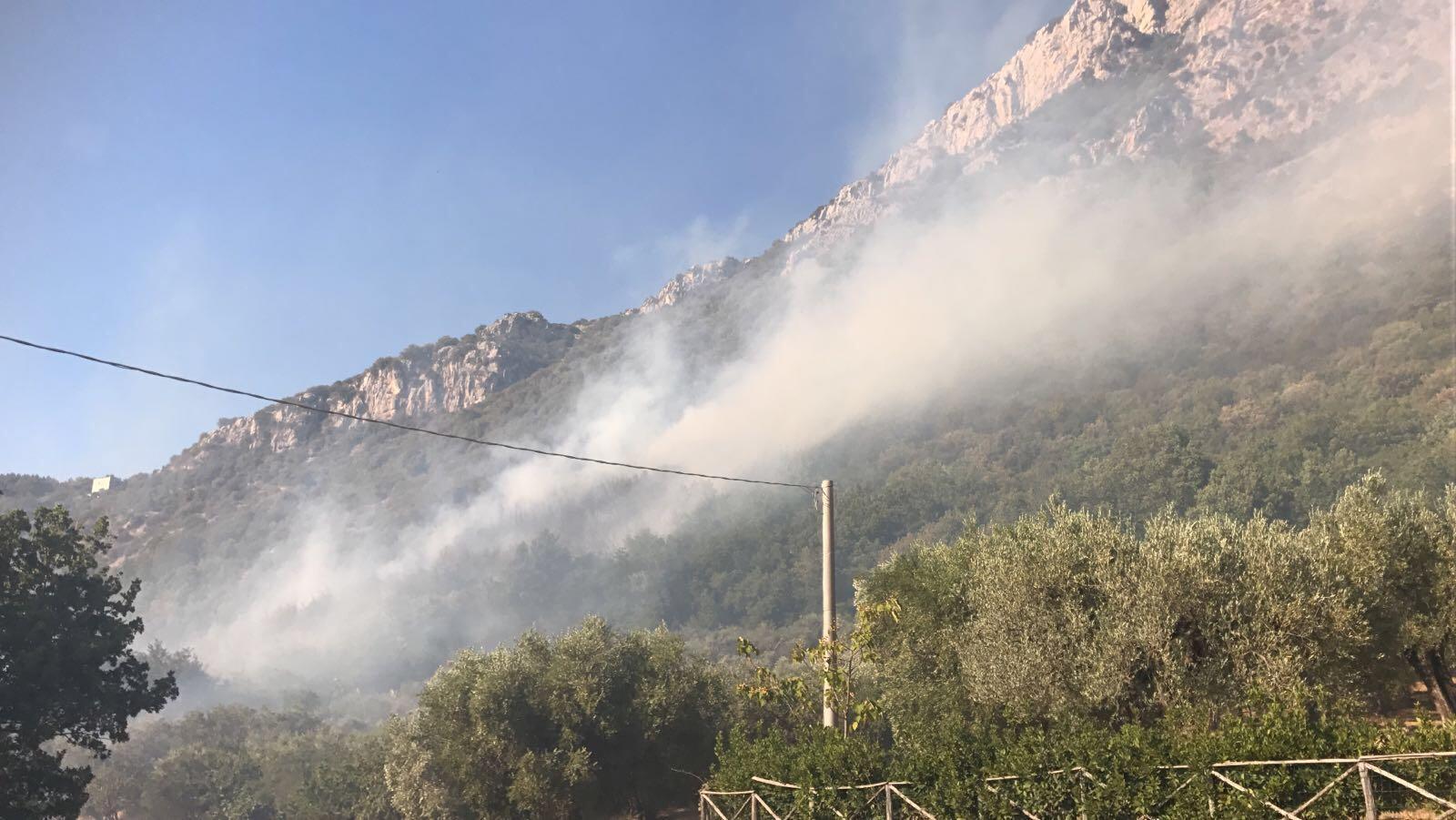 Incendi: chiesto lo stato di calamità naturale
