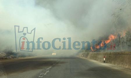 FOTO   Brucia ancora il Cilento: vasto incendio lungo la Cilentana