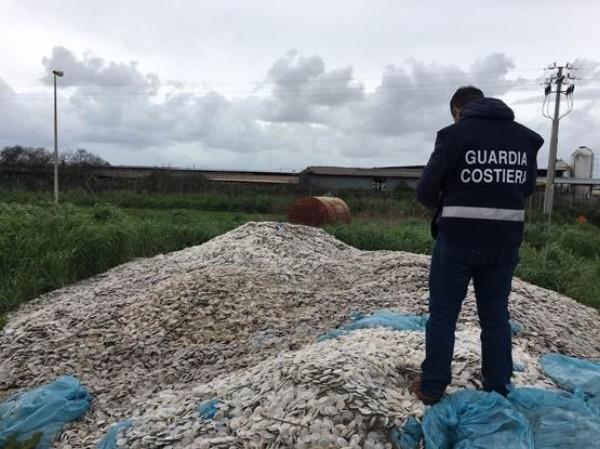 Photo of Capaccio Paestum, dischetti dispersi in mare: 8 rischiano il processo