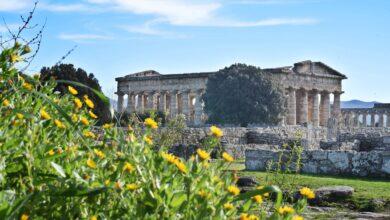 Photo of I cinesi affascinati da Pompei e Paestum