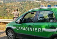 Photo of Casaletto: opere abusive non abbattute, il Parco le acquisisce al suo patrimonio