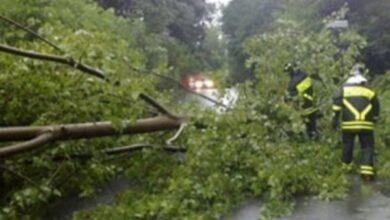 Photo of Orria richiede lo stato di calamità naturale