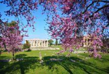 Photo of Capaccio Paestum: i 10 migliori hotel  secondo Tripadvisor