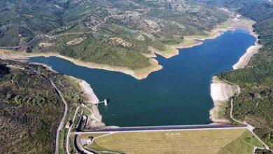 Photo of Viabilità nel Cilento interno: sabato la consegna dei lavori della strada diga Alento – Stio