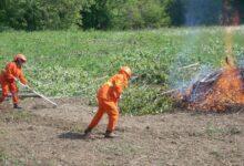 Photo of Provincia: in corso lavori di prevenzione antincendio e difesa del suolo