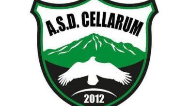 cellarum