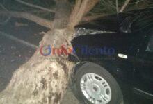 Photo of San Pietro, auto contro albero abbattuto dal vento