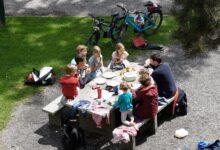 Photo of Ecco le famiglie più numerose a Pollica e Postiglione