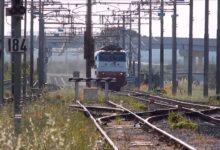 Photo of Policastro, animali sulla tratta ferroviaria: Rfi chiede interventi
