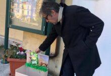 Photo of Vallo, studenti dell'Aldo Moro avviano raccolta di cibo per i randagi