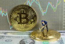 Photo of Quali sono le opinioni degli utenti su Bitcoin Code?