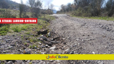 Photo of Strada Laurino – Rofrano? Cammarano: è pericolosa