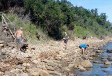 Photo of Agropoli: volontari in azione per sistemare spiagge e sentieri