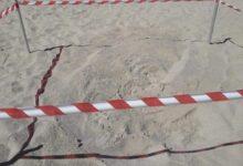 Photo of Nuovo nido di caretta caretta lungo la costa salernitana