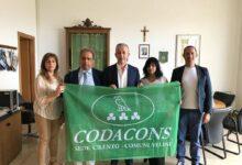 Photo of Codacons Cilento apre nuovo sportello a Moio della Civitella