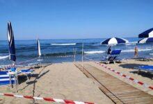 Photo of Due avvistamenti di caretta caretta sulle spiagge del Cilento