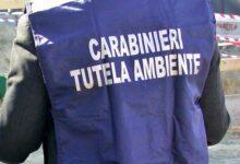 Photo of Policastro, sequestrata l'isola ecologica