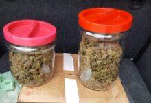 Photo of Polla, due giovani trovati in possesso di droga: arrestati