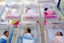 Photo of Ospedale di Polla: oggi record di nascite